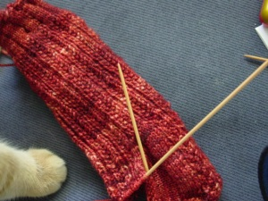 knitting a sock. Not such an uncommon event. Unless you are ME.